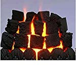 Fire BOX OF 20 Gas Medium Coals replacement Best Buy 4