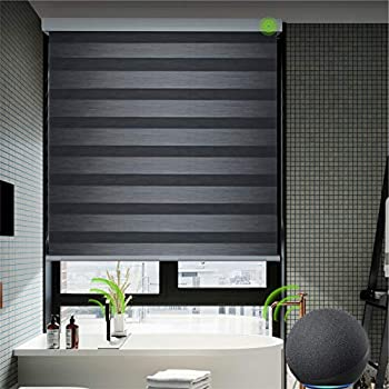 Yoolax Motorized Zebra Shades Works with Alexa Dual Layer Automatic Window Blinds with Remote Control Customized Size Light Filtering Electric Blinds for Home Office  Carbon Black
