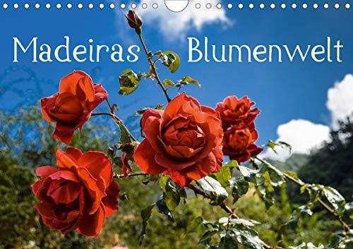 Madeiras Blumenwelt (Wandkalender 2021 DIN A4 quer)