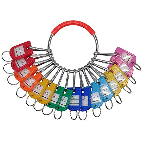 LABEN Portable Metal Ring Key Organizer with 16 Spring Hooks & Key Tags with Ring and Label Window