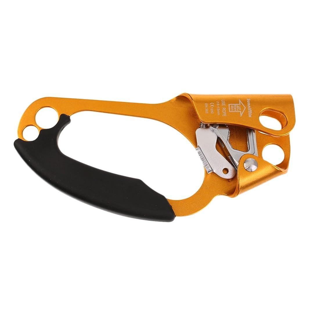 無駄なグリルウサギFityle 4色選べる CE承認 高強度 ハンドアッセンダー クライミング、救助、アロフトワーク、エンジニアリングなど適用