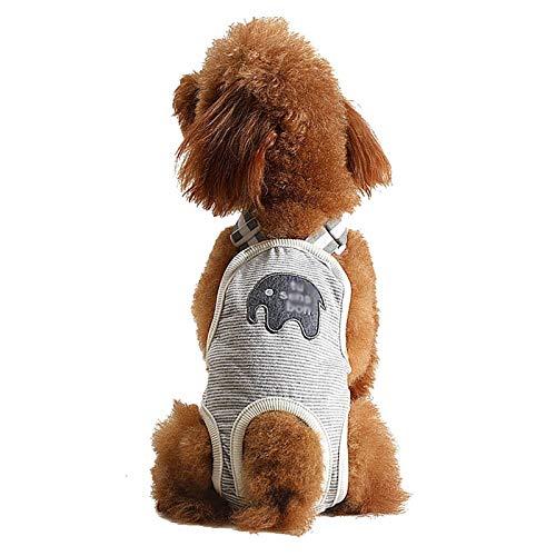 Pañales Lavables para Perros, pañales Reutilizables para Perros, Pantalones fisiológicos, Bragas sanitarias, Bragas para Mascotas pequeñas, Medianas, para Perros (Color : Gray, Size : Medium)