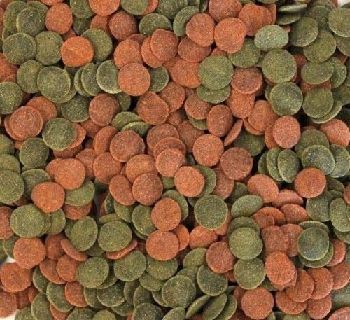 Wohnkult House Brand Mini Wafers Spirulina Colour and Mix for all Corydoras and Soil Inhabitants Crabs Shrimp and Much More Top Food Fish Food (500 ml Mix)