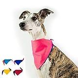 Dognsug perro bandana enfriamiento mascota bufanda pañuelo babero cuello reversible Reino Unido hecho-grande - eléctrico azul & fluo rosa...