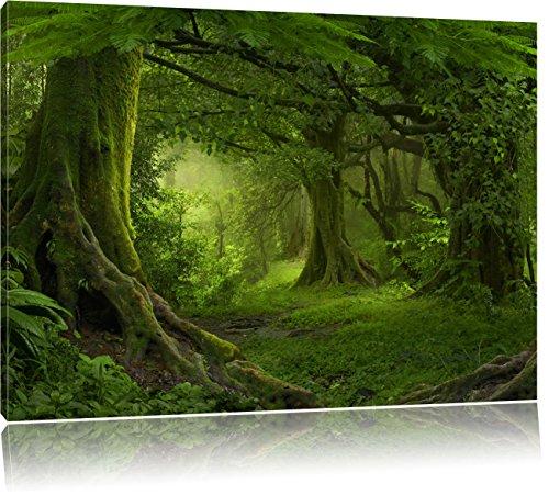 Pixxprint Dschungel im Regenwald als Leinwandbild | Größe: 80x60 cm | Wandbild | Kunstdruck | fertig bespannt