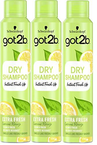 Got2b - Champú Seco Frescor Extra - 3uds de 200ml (600ml) – Refresca tu cabello al instante – Un día de extra de frescor para tu cabello
