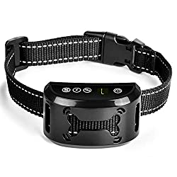Tebaba Anti-Barking Collar For Dogs
