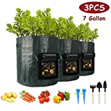 3 Stück Pflanzsack, 7 Gallonen 3x31.8L Recycelbar Pflanze Wachsende Tasche mit Sichtfenster und...