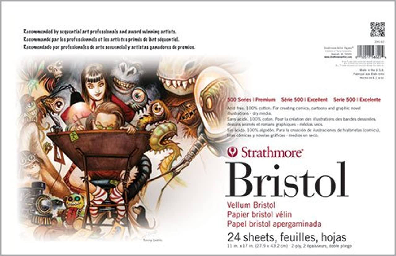Strathmore ((580-42 500 Series Sequential Art Bristol, 2-Ply Vellum Surface, 24 Sheets
