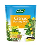 Westland Citrus Potting Compost Mix and Enriched with Seramis, 8 L