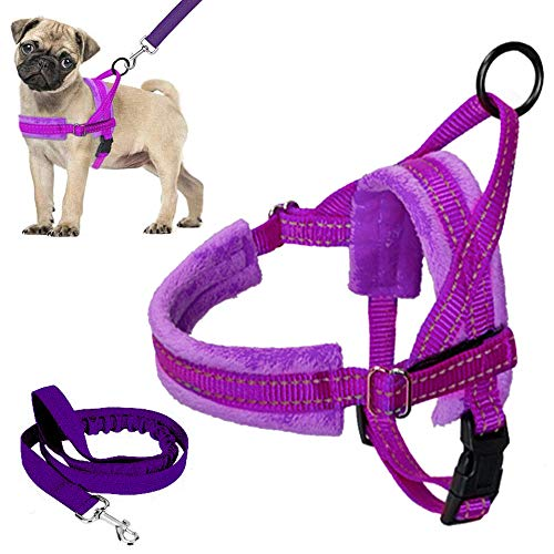 Lukovee Walking Dog Harness and Leash, Heavy Duty Adjustable Puppy Harness Soft Padded Reflective Vest Harness Anti-Twist 4FT Pet Lead Quick Fit Lightweight for Small Dog Cat (XX-Small, Purple)