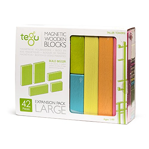 Tegu 42 Piece Magnetic Wooden Building Block Toy Set Expansion Pack Large Tints (Girl-Boy Educational STEM Gift For Ages 1, 2, 3, 4, 5, 6+ Years Old)