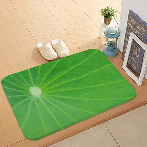 XingXiang Schmutzmatte für Wohnzimmer und Schlafzimmer (Farbe: DM01514, Größe: Kristallsamt, 40 x 60 cm)