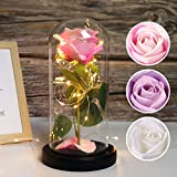 RECUTMS Beauty and The Beast Rose, Pink + White Rose and Led Light in a Glass Dome for Mothers Day Valentine's Day Home Decor Holiday Birthday Party Wedding Anniversary (Pink+White)