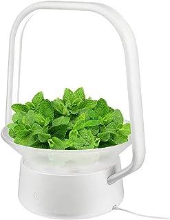 VegeBox Stylist Smart LED Hydroponics Growing System, Indoor LED Lighting Herb Garden Plant Germination Kits (V-Basket, White)