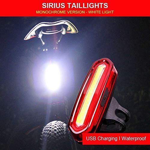 Hohe Qualität Fahrradrücklicht wasserdichte Reitrücklicht LED USB gebührenpflichtiges Mountain Bike Fahrrad-Licht-Endstück-Lampe Fahrrad-Licht Zum Reiten im Freien (Color : White Light)