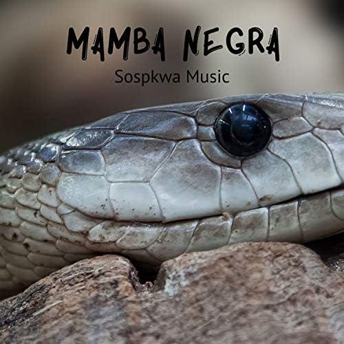 Sospkwa Music feat. Jotaika Bops
