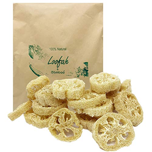 100% Natural Loofah Slices for Soap Making (20 Pack) - Luffa Slices Cuts - Loofah Kit - Organic Soap Making Products - Loofah Sponge Natural - Loofah Natural - Loofah Soap