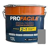 Peinture 2en1 façade direct sans sous couche, mat, extérieur, imperméabilisante, respirante, 12L Gris