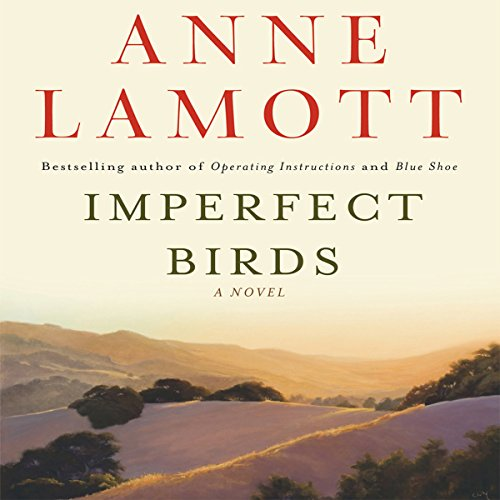 Imperfect Birds audiobook cover art