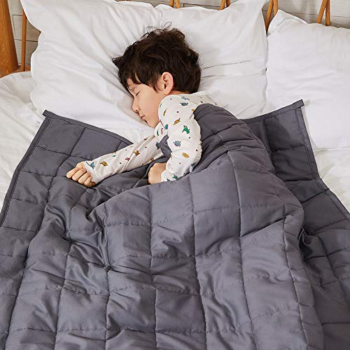 ZonLi Heavy Weighted Blanket