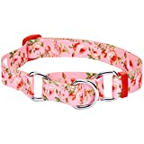 Blueberry Pet 7 Patterns Spring Scent Inspired Rose Print Safety Training Martingale Dog Collar, Baby Pink, Medium, Heavy Duty Adjustable Collars for Dogs