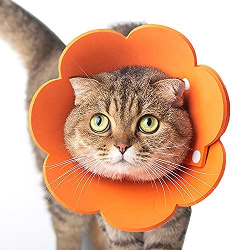 Tecatty Haustier Halskrausen Antilecker Halskragenkatze Verstellbar von 14-35 cm Leichtgewicht Schutzkragen Elizabethan Halsband Halskrausen für Katzen (M, Orange)