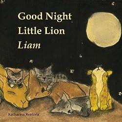 Good Night Little Lion Liam