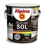 ALPINA Peinture Sol - Satin Gris Foncé 2,5L 25m²