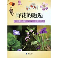 Wildflowers encounter(Chinese Edition)