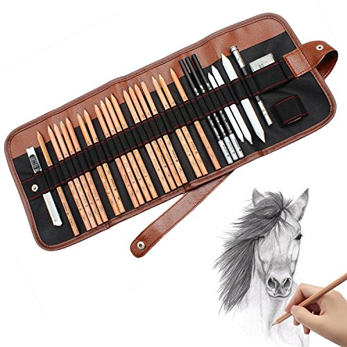 5A-AKKU 18pcs Sketch Pencils Charcoal Pencils for Drawing With Roll Up Canvas Carry Bag Charcoal Drawing Set Eraser Craft Knife Pencil Extender 29pcs in Total for Beginners Artist Student