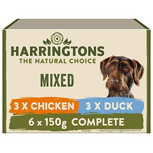 HARRINGTONS Harrington's Nassfutter für Hunde, 3600 g
