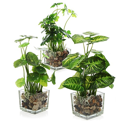 MyGift Set of 3 Artificial Plants, w/Clear Glass Pots