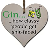 Handmade Wooden Hanging Heart Plaque Gift Perfect for Gin Lovers Novelty Funny Keepsake