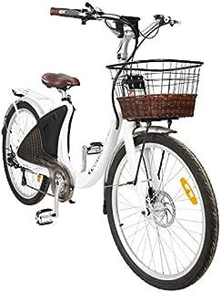 ECOTRIC Powerful Electric Bike 26