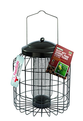 Gardman A01821 Heavy Duty Squirrel Safe Peanut Feeder