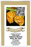 RWS Habanero Mostaza - mostaza o de color miel, chile habanero - 10 semillas