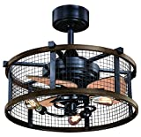 Humboldt 21' Ceiling Fan Oil Rubbed Bronze and Burnished Teak