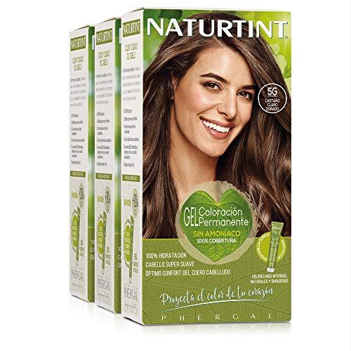 Naturtint Coloración. Tinte sin Amoniaco.100% Cobertura de Canas. Ingredientes Vegetales. Color Natural. 5G Castaño Claro Dorado. Pack de 3