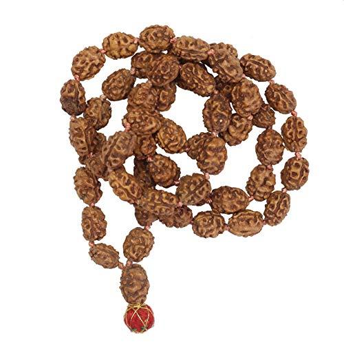 Freak Scene Cadena de oración - Cadena de Mala - Cadena de meditación - Cuentas de Rudraksha - Modelo 05-2 Mukhi - 1/2 Longitud