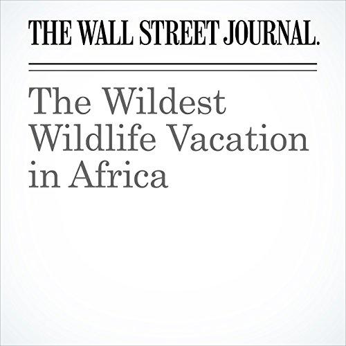 The Wildest Wildlife Vacation in Africa copertina
