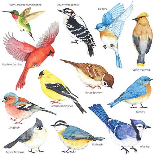 DECOWALL DS-8042 Petits oiseaux Autocollants Muraux Mural Stickers Chambre Enfants Bébé Garderie Salon(Petit)