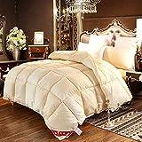 CHOU DAN EdredóN De Fibra,Duvet Filler,Toddler Duvet and Pillow White Duvet, All Year Round, Full Size 2.2X2.4 2500g