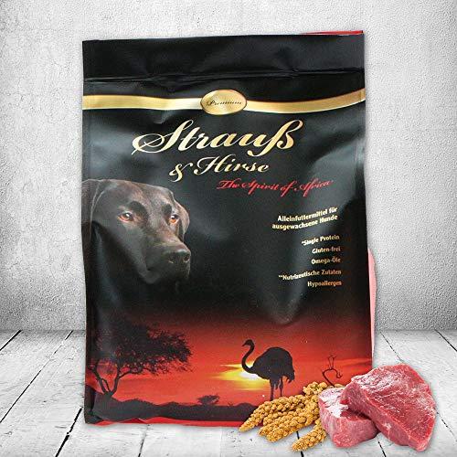 Schecker Dogreform Strauß und Hirse Premium 1 x 1,5 kg Trockenfutter Hundefutter - glutenfrei - Single Protein