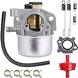 ZAMDOE Carburador para 190CC 725EX 799866 790845 799871 796707 794304 Motores para Toro Recycler 22 '', para Craftsman 7.25 6.75 Cortacésped, con línea de Combustible Filtro de Combustible