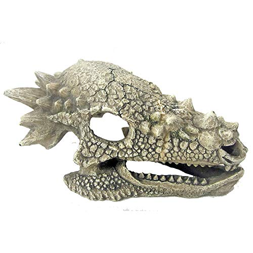 Wave Dragon Skull B