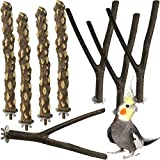 kathson Natural Bird Wood Perch Parakeet Standing Toy Sticks Parrot Paw Grinding Branches Cockatiels Cage Chewable Accessories for Conures Macaws Finches 8 PCS