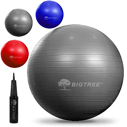 Bigtree Exercise Ball Extra Thick Yoga Ball Chair AntiBurst Heavy Duty Stability Ball Birthing Ball with Quick Pump Office amp Home amp Gym Silver 55CM