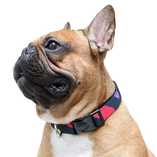 iChoue Pet Dog Soft Comfy Collar Neoprene Padded Adjustable Pretty Pattern Design Nylon Collars Wide 1' Long 18'-26' for Medium Large Dogs - Colorful Wave Point Size L