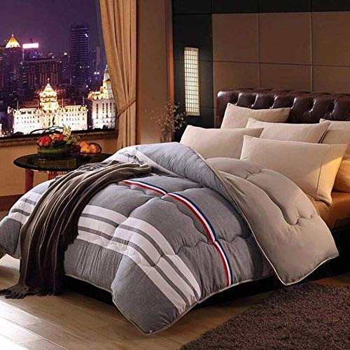 Luxurious duvets, feather core, two blankets, large quilts, duvets spring and autumn, the hotel home, classic duvet, 180x220cm 2.5kg